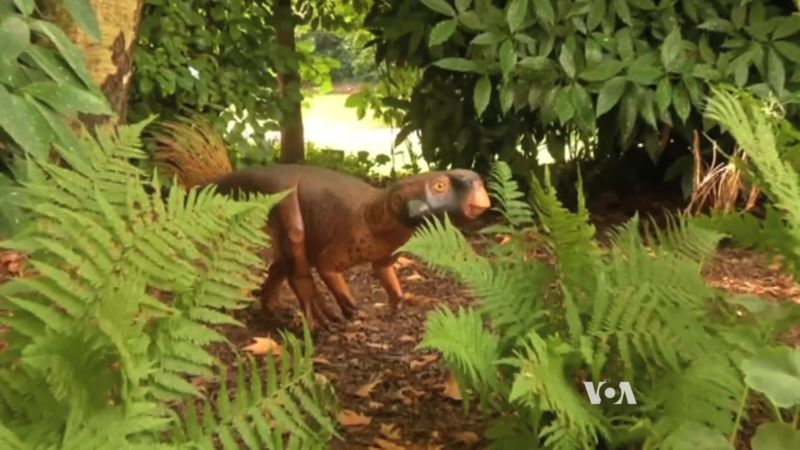 Scientists Create Realistic Model of a Dinosaur, Including its Color