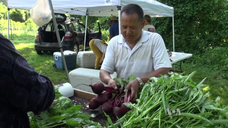 Refugee Farmers Plant New Roots in US