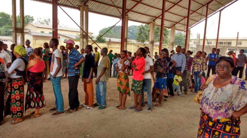 WHO: Yellow Fever Under Control in Angola and DRC