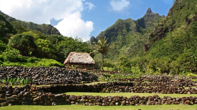 Ancient Hawaiian Farmers Offer Lessons in Sustainability