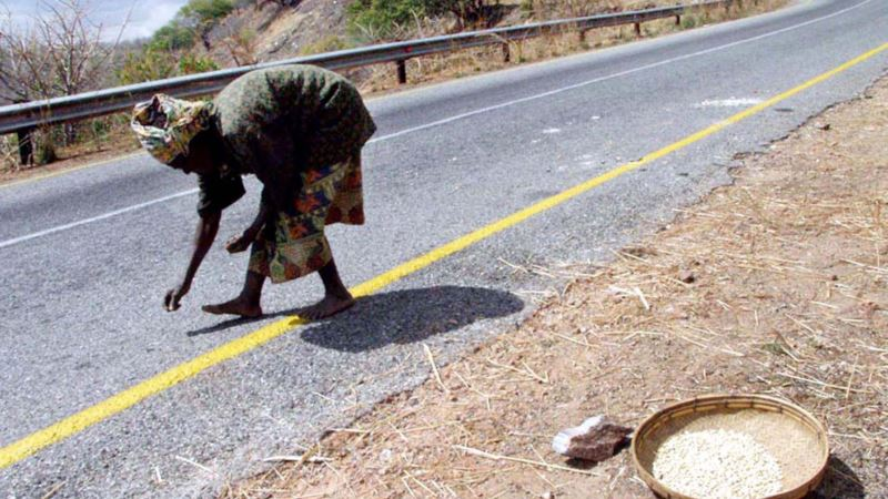 As Drought Hits Zambian Harvests, Food Prices Rise