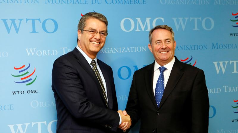 WTO: Trade Growth Slows, Crimps Economy; Faces Political Challenges