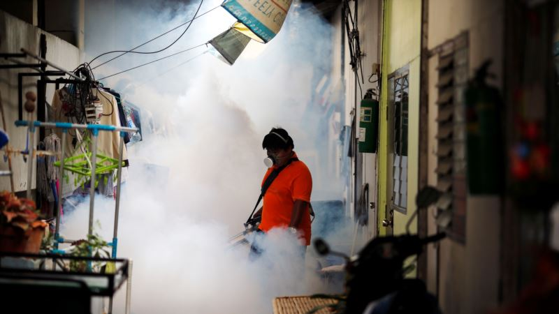 About 200 Zika Cases Recorded in Thailand – Ministry