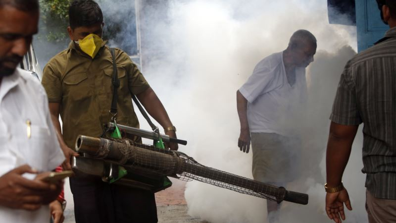 WHO Calls on Asia to Guard Against Zika
