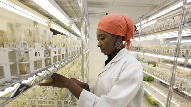 Push forAgricultural Renaissance in Africa Gets $30B Boost