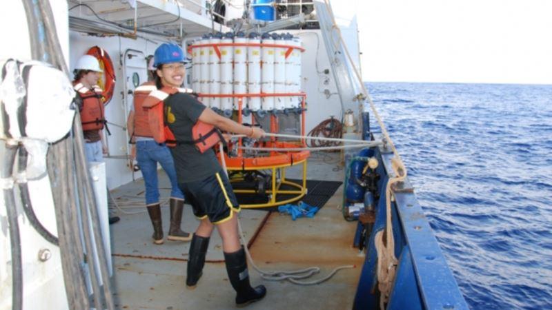 Report: Acidic Oceans Tied to Human Activity