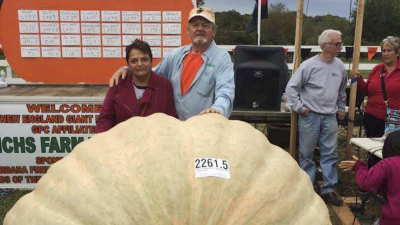 Gourd Almighty! Father Smashes Son's Giant Pumpkin Record