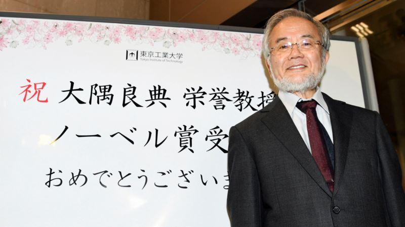 Japan's Ohsumi Awarded Nobel Medicine Prize