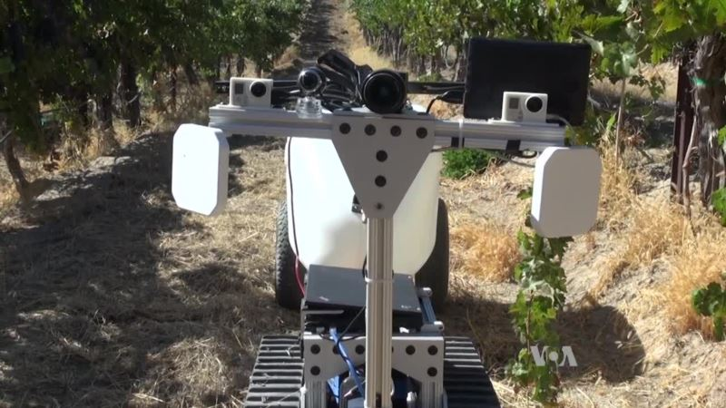 Researchers Develop Robot to Tackle Mundane Farm Tasks