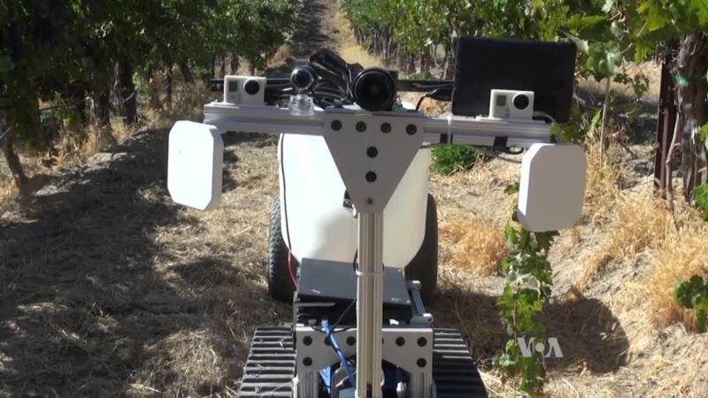 Idabot Robot Tackles Mundane Farm Tasks