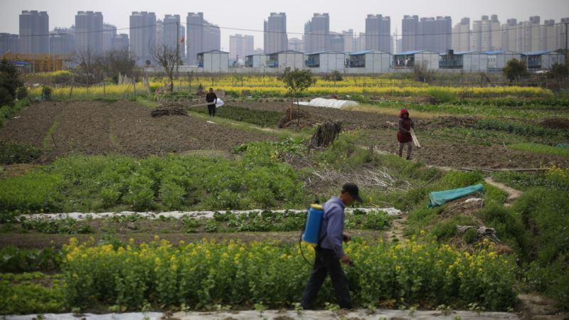 China Embraces Corporate Farming