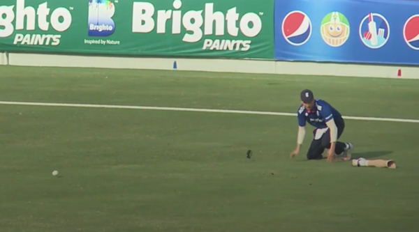 This cricketer still fielding the ball despite losing his prosthetic leg will motivate you for the week