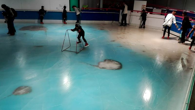 Skating Rink in Japan Closed Over Dead Fish Controversy
