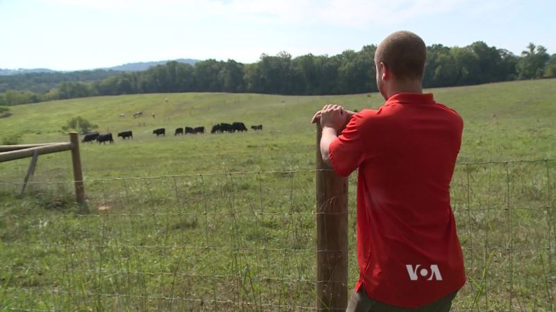 Milton's Local Helps Farmers and Raises Incomes