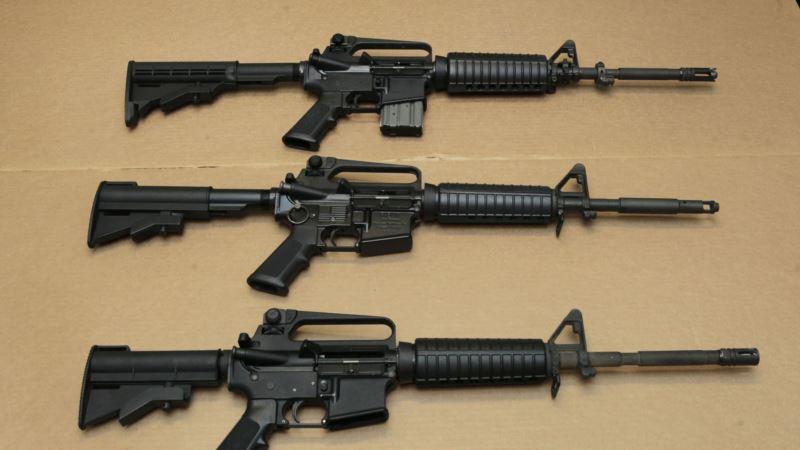 The Real Story: Black Friday US Gun Sales