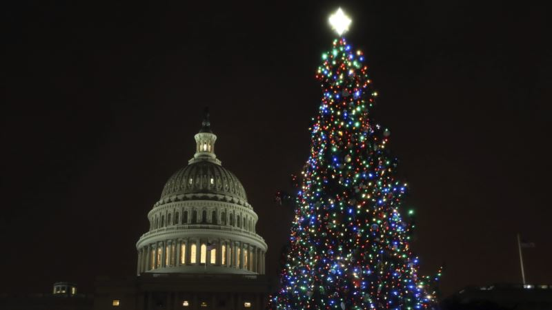 US Capitol Christmas Tree Lit By US House Speaker, Boise Schoolgirl