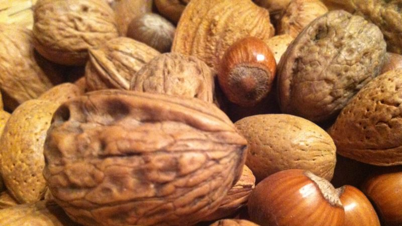 Daily Handful of Nuts Reduces Disease Risk: Study