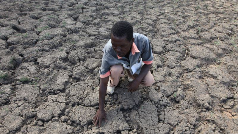 Southern Africa's Dire Food Situation Grows Worse
