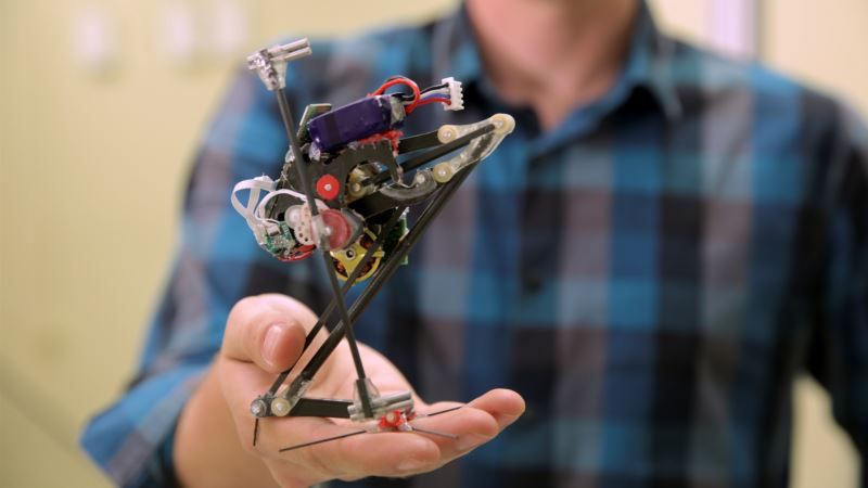 Little African Primate's Talents Inspire Leaping Robot
