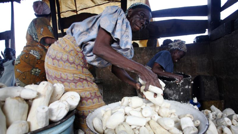 African Officials Seek Local Value-added Food Products