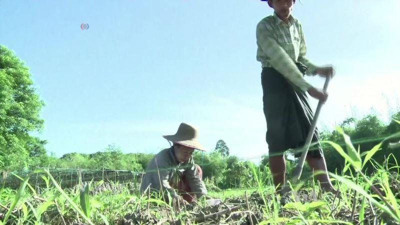 3-D Printing Makes Better Tools for Myanmar Farmers