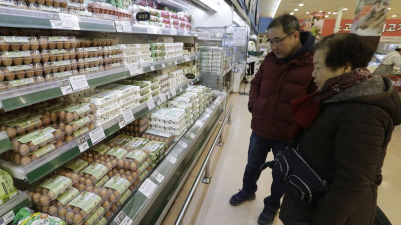 US Scrambles to Clear Egg Exports to Bird Flu-hit South Korea