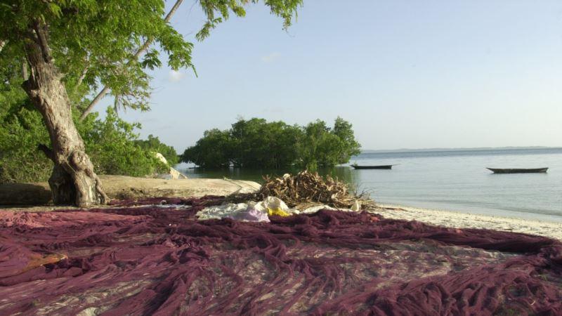 Tanzania Reports Jump in Tourist Arrivals