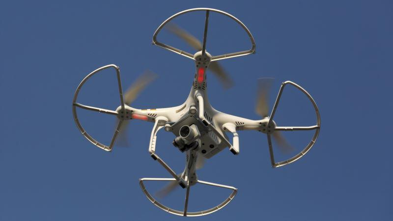Dog Fight: Start-ups Take Aim at Errant Drones