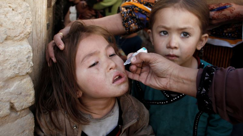 Pakistani City Launches New Polio Campaign After Rare Strain Found