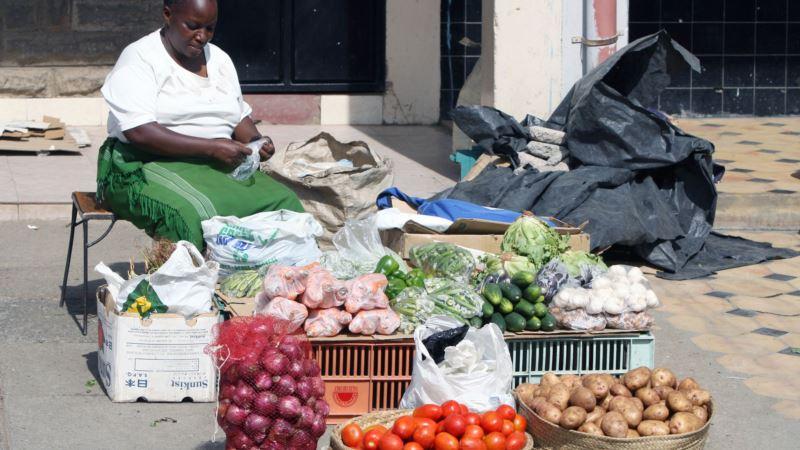 Kenyan Irrigation App Aims to Cut Water Waste, Crop Losses