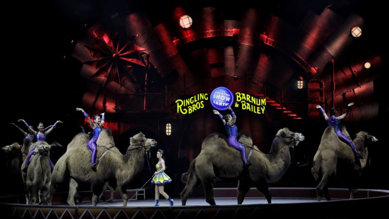 Famed Ringling Bros. Circus Shutting Down in May