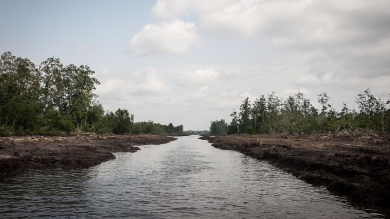 Crackdown on Bush Refineries Unsettles Nigeria's Oil Heartland