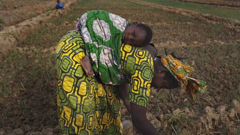 New Law a Glimmer of Hope for Women's Land Rights in Mali