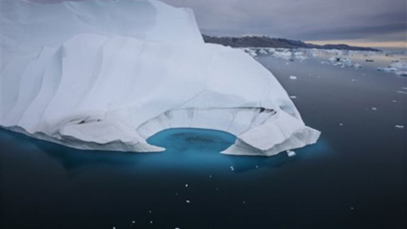 Study: Thinning Arctic Sea Ice Lets in Light, Prompts Algae Bloom