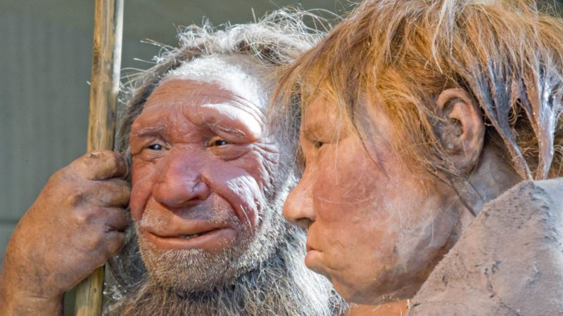 Breathe Easy: Nose Shape Was Influenced by Local Climate