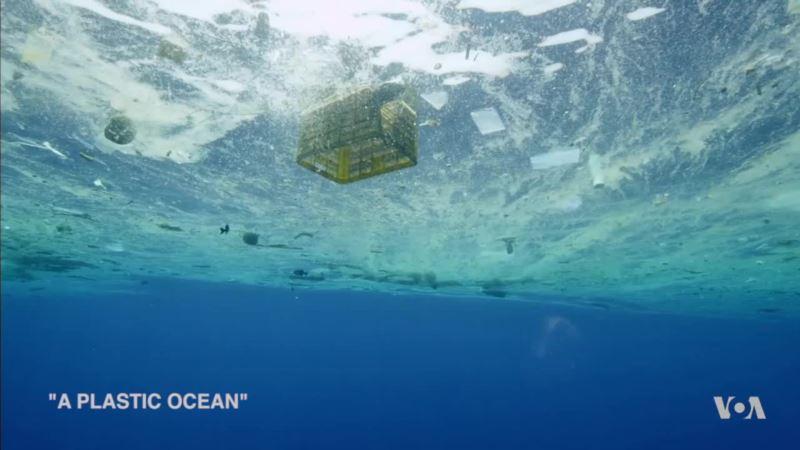 Film Looks at Plastics in the Oceans