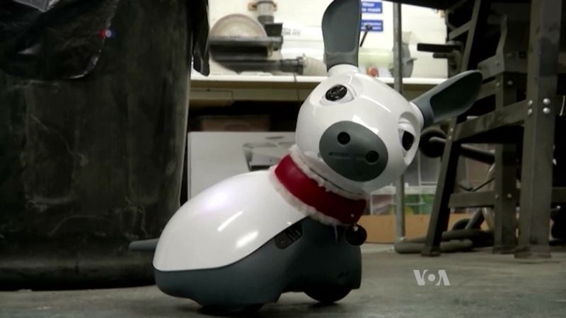 Robotic Pet Could Provide Comfort for the Disabled, Elderly