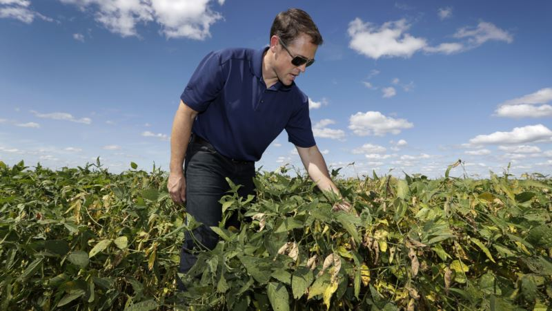 US Agriculture Bets the Farm on Chinese Soy Demand