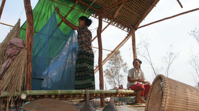 WHO, Medical Workers, Mark Progress in Southeast Asia Malaria Fight