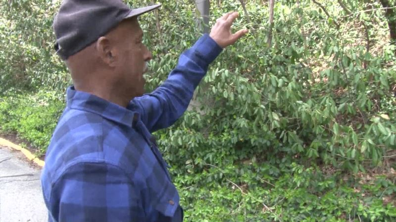 Controversy Over Former Black Cemetery Uncovers History of Forgotten Community