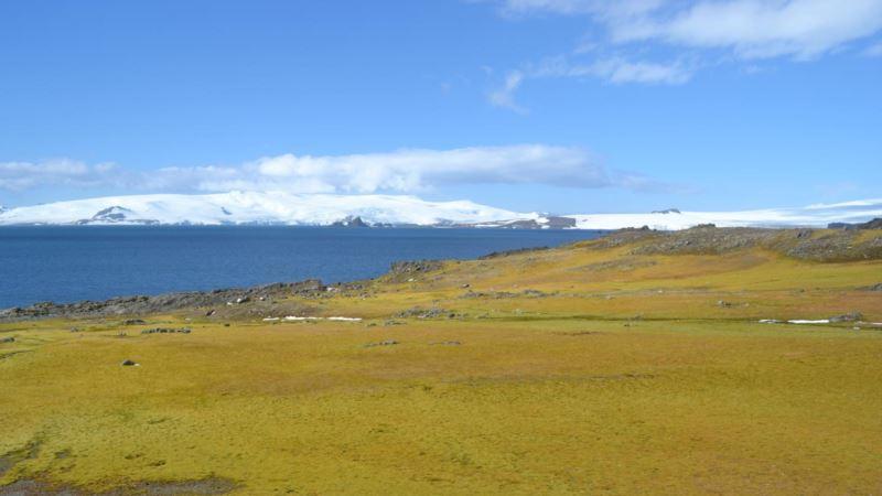 Climate Change Fueling Rapid Greening of Antarctic Peninsula