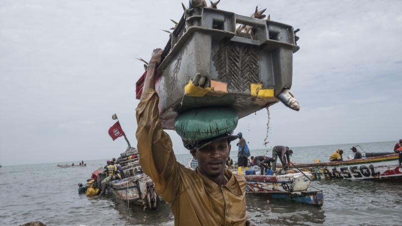 No Good Fish in the Sea: Overfishing in Senegal