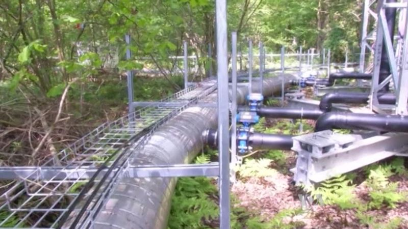 Testing The Limits of a Carbon Sink