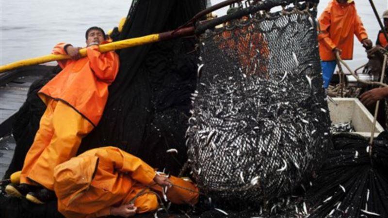 Peru, Indonesia to Make Fishing Boat Tracking Data Public