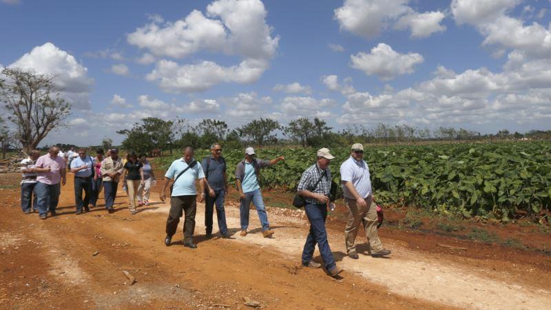 Farmers Blast Trump's Cuba Retreat as Bad for Trade