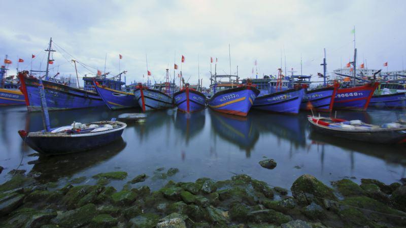 Study: 10 Percent of Fish Caught in Oceans Get Dumped