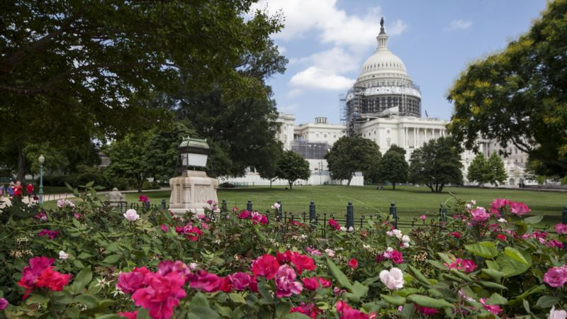 Tax Overhaul in Trouble as Opposition to Import Tax Grows