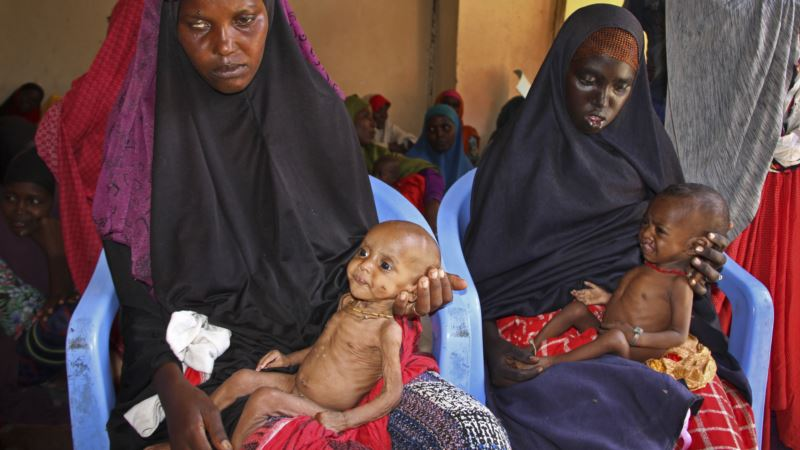 Record Hunger in Horn of Africa Pushes Development Banks to Step In
