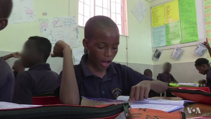 Simple Malaria Intervention in African Schools Leads to Big Improvement in Students' Performance