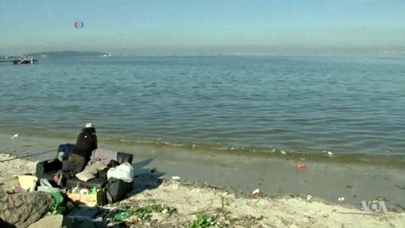 World's Oceans in Decline
